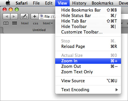 Screenshot of Safari's text size option